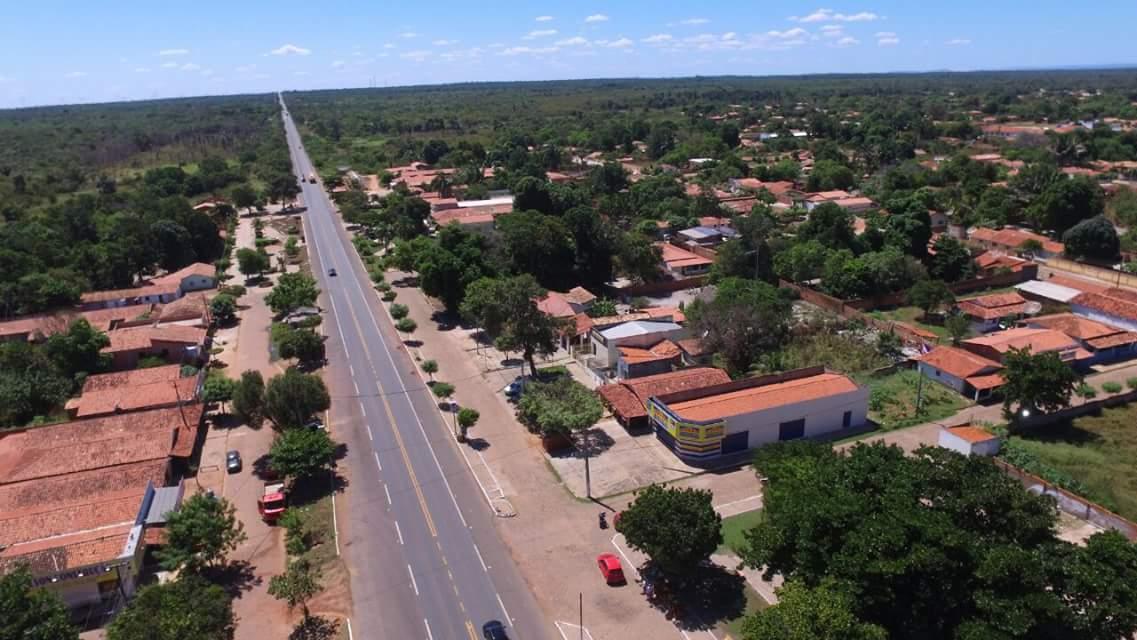 Cocal Piauí fonte: dia.portalodia.com