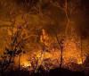 Incêndio na Chapada dos Veadeiros já consumiu quase 15% da unidade
