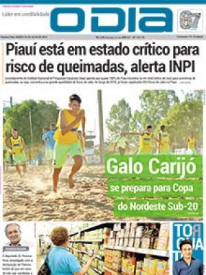 Jornal O Dia - Piauí está em estado crítico para risco de queimadas, alerta INPI