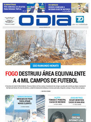Jornal O Dia - Fogo destruiu área equivalente a 4 mil campos de futebol