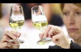 Curso Internacional certifica interessados em cultura do vinho