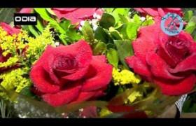 Especial Transmídia: Dia dos namorados inesquecível