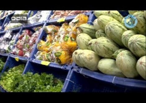 Especial transmídia: alimentos necessários para nutrição diária