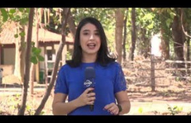 O DIA NEWS 2EDICAO 14 09 BLOCO 01
