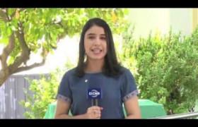 O DIA NEWS 2EDICAO 01 10
