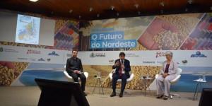Piauí é o estado do NE que mais cresceu acesso à internet