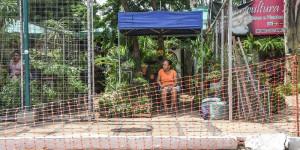 Venda de flores cai até 80% com interdição parcial da avenida Raul Lopes