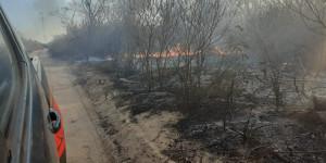 Incêndio ambiental ameça atingir casas na cidade de Pio IX e Bombeiros é acionado