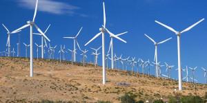 Empresa quer investir R$ 1,9 bilhões na construção de parque eólico no PI