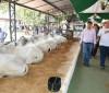 Expoagro de Piripiri movimenta mais de R$ 5 milhões em negócios