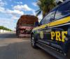 PRF: Madeira apreendida seria suficiente para cobrir 320 casas