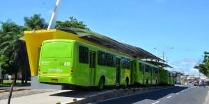 Aplicativo faz acompanhamento em tempo real de linhas de ônibus