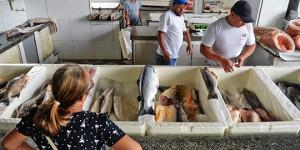 Seu bolso: quilo do peixe pode custar até R$ 57,00 no período da quaresma