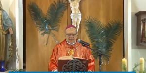 Perdeu a transmissão da Missa de Ramos? Confira aqui a celebração completa.