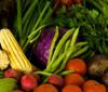 Produtos agroecológicos são vendidos em drive thur na Ponte Estaiada