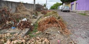 Moradora denuncia descarte irregular de lixo por funcionários da Prefeitura de Teresina