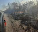 Incêndio ambiental ameaça atingir casas na cidade de Pio IX