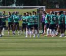 Palmeiras faz trabalho técnico em reapresentação sem Dudu e Angulo