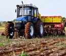 Área de cultivo da soja perde 32,2 mil hectares para o milho