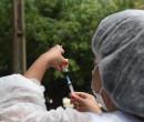 Covid-19: pessoas de 37 anos já podem agendar primeira dose da vacina em Teresina