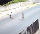Homens que tentavam roubar motoristas no Ilhotas eram monitorados; dois morreram