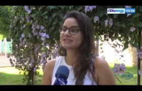 O DIA NEWS 16 07  Período de férias aumenta o abandono de animais em Teresina