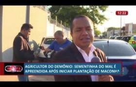 ROTA DO DIA 25 06  Agricultor apreendido após iniciar plantação de maconha
