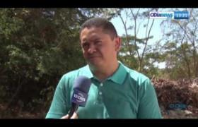 O DIA NEWS 29 07  Cresce a preocupação com ataques de bichos peçonhentos