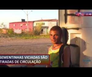 TV O Dia - ROTA DO DIA 23 08  Viciados são tirados de circulação