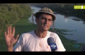 BOM DIA NEWS 03 10  Aguapés voltam a tomar conta da superfície do rio Poti