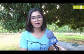 BOM DIA NEWS 17 10  Grupo Reviver - Dia de Conscientização de Perda Gestacional
