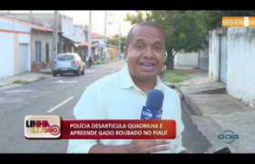LINHA DE FOGO (10 12) POLÍCIA DESARTICULA QUADRILHA E APREENDE GADO ROUBADO NO PIAUÍ