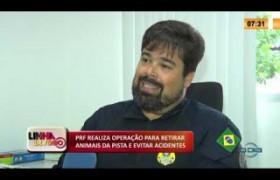 LINHA DE FOGO 27 01 2020 PRF REALIZA OPERAÇÃO PARA RETIRAR ANIMAIS DA PISTA E EVITAR ACIDENTES