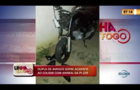 LINHA DE FOGO 13 02 2020 DUPLA DE AMIGOS SOFRE ACIDENTE AO COLIDIR COM ANIMAL DA PI-229