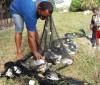 Policial aposentado aposta na criação de peixes em tanques cavados em Nazária 17 07 2021