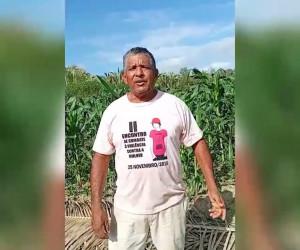 TV O Dia - 28 de Julho celebra-se o Dia do Agricultor, trabalhador importante na economia brasileira 31 07 2021