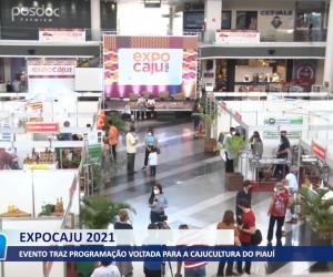 TV O Dia - Evento traz programação voltada para a Cajucultura do Piauí 23 09 2021