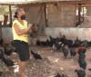 Produtora rural de Demerval Lobão aposta na criação de galinhas da raça canela preta 18 09 2