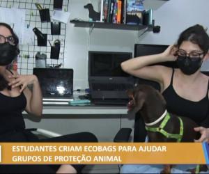 TV O Dia - Estudantes criam ecobags para ajudar grupos de proteção animal 25 10 2021